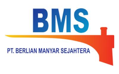 Logo Berlian MS